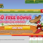Bingo Gringo New Customer Bonus