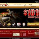 Cocoa Casino бонус