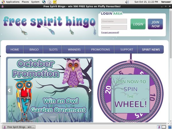 Free Spirit Bingo Please