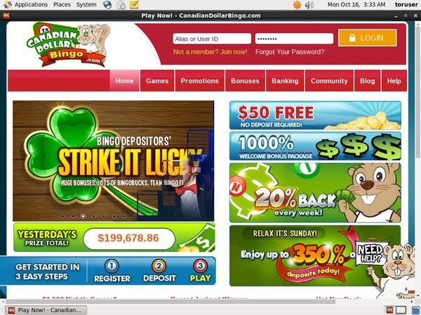 Casino Canadian Dollar Bingo