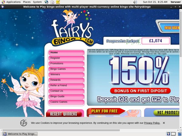 Fairys Bingo Online Casino Offers