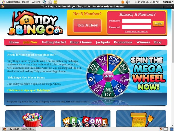 Tidy Bingo Free Play
